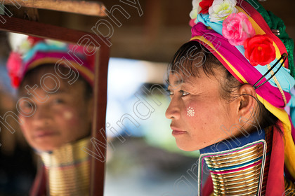 Long Neck 1 