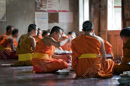 Alms 20 